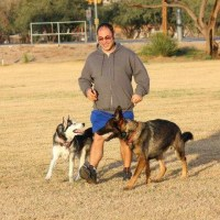 Germand Shepherd & Husky Dog Training Tucson, AZ