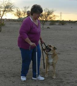 dog Training Sahuarita, AZ