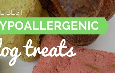 best hypoallergenic dog treats