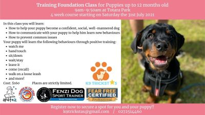 Training Foundation Class