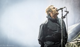 Liam Gallagher In The Park Festival