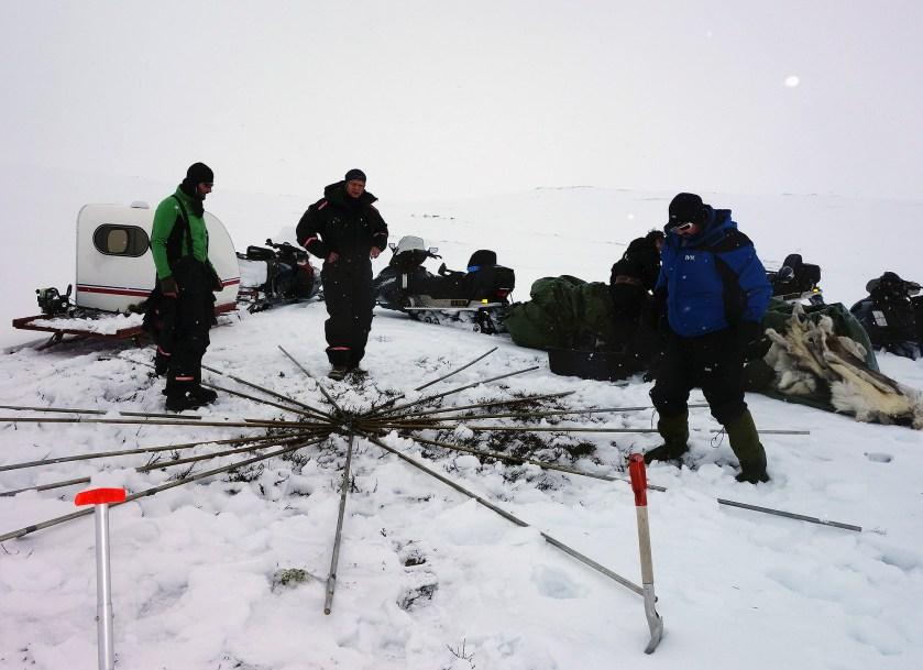 Tre søringer forsøker å få opp en lavvo. Helge Kaasin, Øyvind Werner Øfsti og Bjarne Ringstad Olsen. Foto: Edmund J. Grønmo.