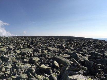 Langt der oppe, etter Eimefonni, er Prestholtskarvet (1859 moh.).
