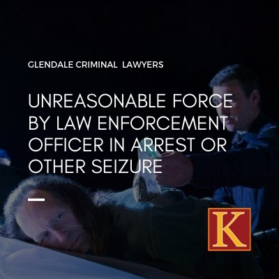 Unreasonable Force by Law Enforcement Officer in Arrest or Other Seizure
