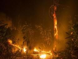 Kekeringan Jadi Pemicu Kebakaran Lahan di Sumsel