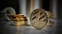Litecoin (LTC) Sedang MeLakukan Kompanye Adopsi