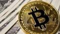 Harga Bitcoin Naik dan Turun