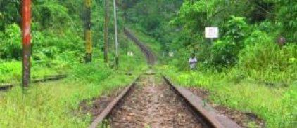 hipwee-train-11-640x345