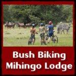 bush-biking