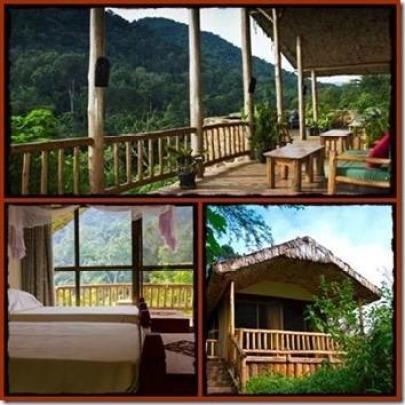 Engagi Lodge - Bwindi Impenetrable Forest - Buhoma