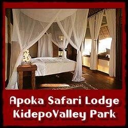 Apoka-Lodge-lodging