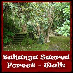 Buhanga-Sacred-Forest