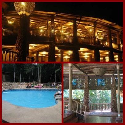 mabira-rainforest-lodge-page1