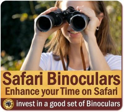 Best Binoculars for your African Safari in Uganda