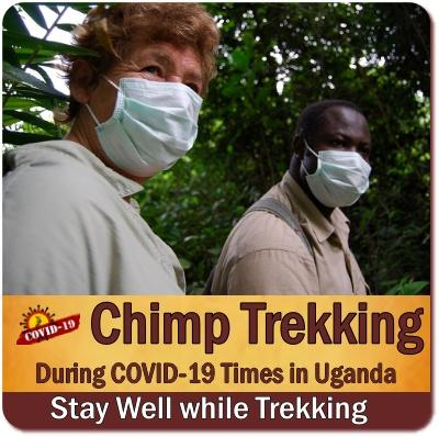 COVID-19 Chimpanzee Trekking Rules - Regulations in Uganda