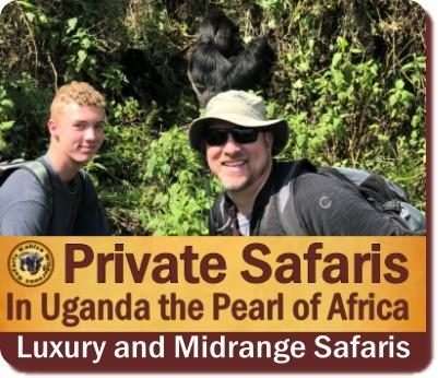 Kabiza Wilderness Safaris -Gorilla-Chimpanzee-Wildlife Tours in Uganda
