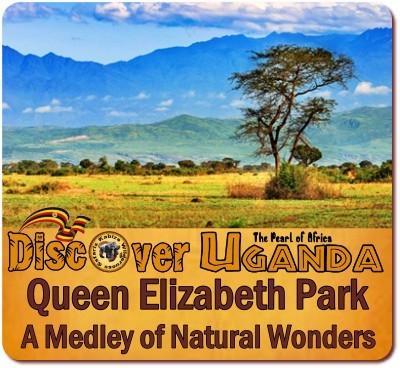 Kibale Forest Chimps plus Queen Elizabeth Park Wildlife Safari