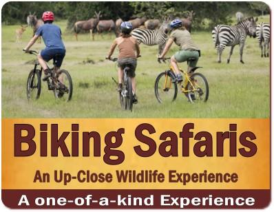 Top Things to Do and See at Lake Mburo Park-a Whisper of the African Wild