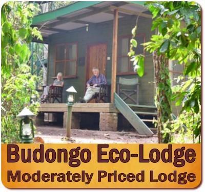 Value+Priced 4 Day-Big 5 Wildlife Safari-Murchison Falls Park in Uganda