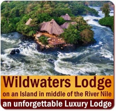 Welcoming Family - Kid Friendly - Lodges in Uganda