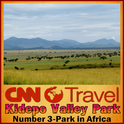 12 Day Untamed - Undiscovered Uganda Wildlife Safari