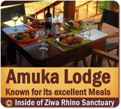 Amuka Lodge - a fabulous Hideaway in Ziwa Rhino Sanctuary
