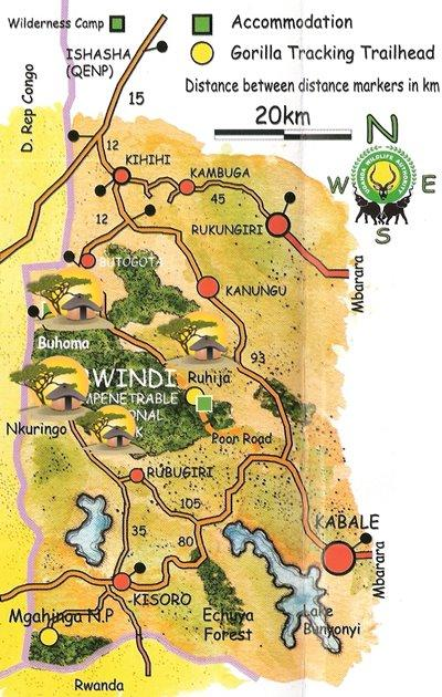 Picking the right Lodge for your Gorilla Trek - Bwindi Forest