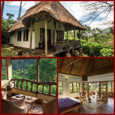 Bwindi Lodge - Buhoma - Bwindi Impenetrable Forest