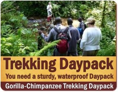 Waterproof Daypack for your Gorilla Trekking Safari in Uganda - Rwanda