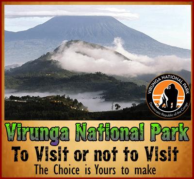 Visiting Virunga National Park - D.R. Congo in 2019