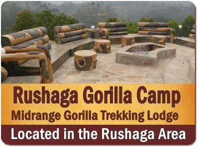 Lodging Choices for Gorilla Trekking-Habituation Experience in Rushaga Area