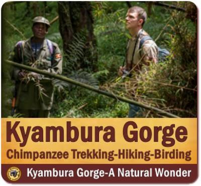 The Kyambura Gorge Lodge - Queen Elizabeth Park