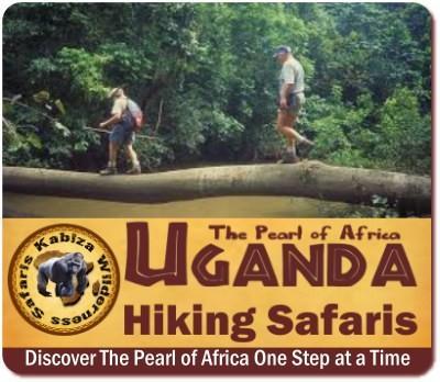14 Day Gorilla - Chimpanzee - Wildlife Hiking Safari - Uganda