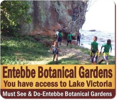 A Visit to Entebbe Botanical Gardens