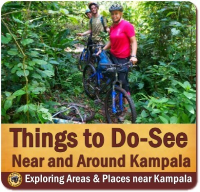 Top Things to Do and See