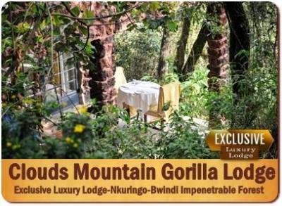 3-Day Luxury Gorilla Trekking Safari in Southern Bwindi Impenetrable Forest
