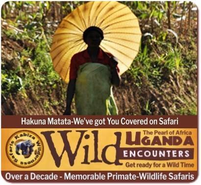 Our Price Guarantee - Kabiza Wilderness Safaris