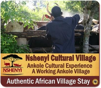 Nshenyi Cultural Village Stay