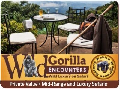 Uganda gives you more Gorilla Trekking Choices and Options