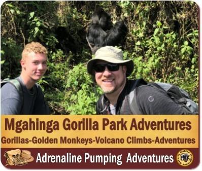The Best 10 National Parks in Uganda