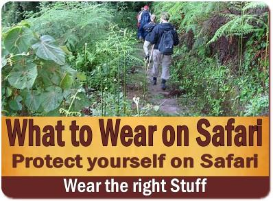 The Best Insect Repellent for your Safari in Uganda