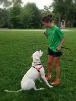 Practicing a sit request with Dogo Alastair during a private session.