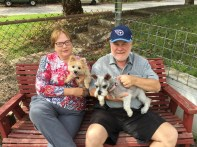 Daisy and Zoey can be a happy family after Kabler training.