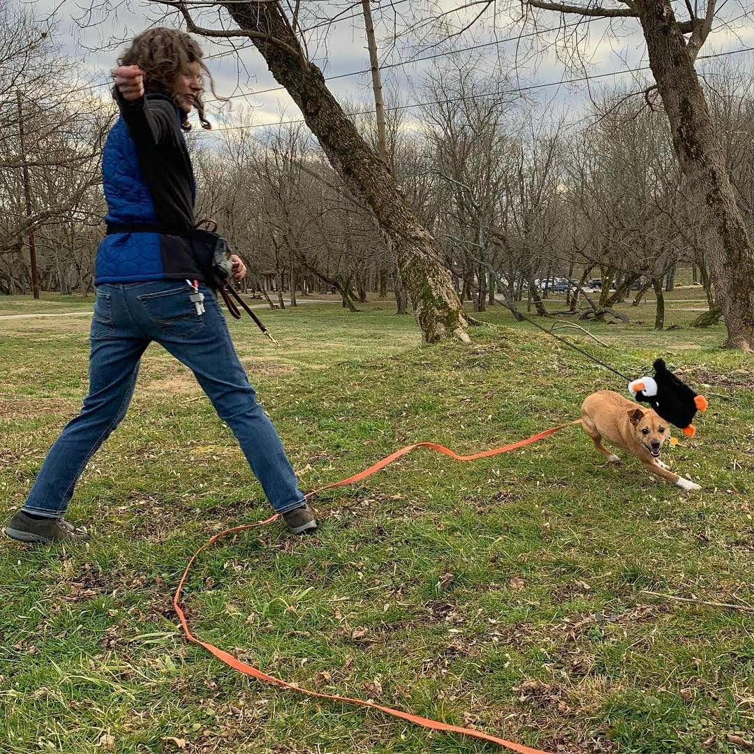 Shy dog training using the right blend of training.