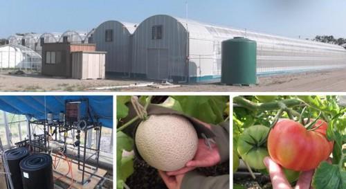 オプティムIT農業