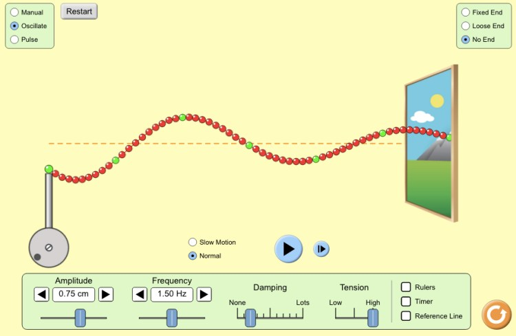 PhET Interactive Simulation on Waves