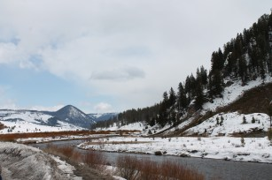 Yellowstone, MT