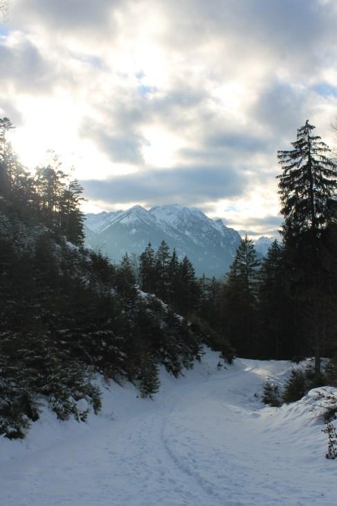 Amongst the Austrian Alps