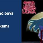 My fading days por Akemi (Touhou Remix)