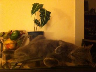 Rousseau lying on back Kadampa Life